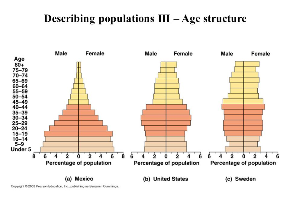 Describing populations III – Age structure