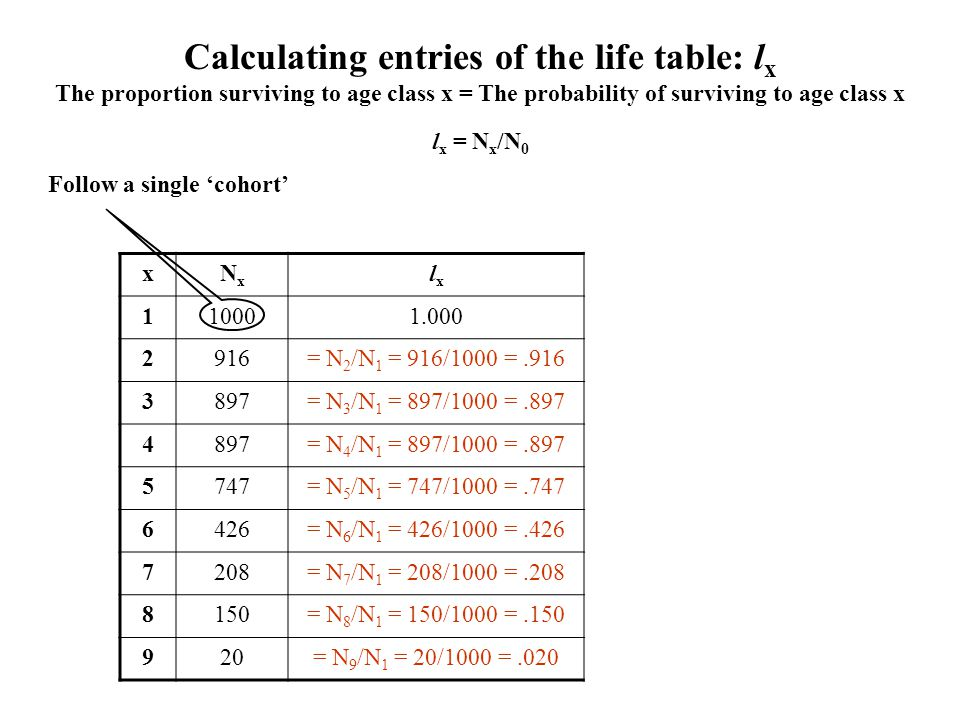 Calculating entries of the life table: lx