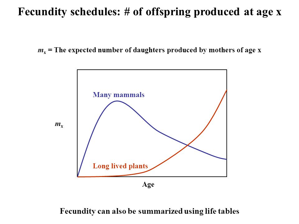 Fecundity schedules: # of offspring produced at age x