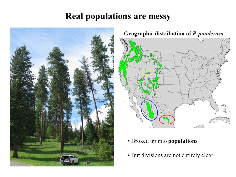 Real populations are messy