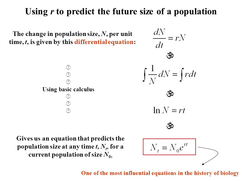 Using r to predict the future size of a population