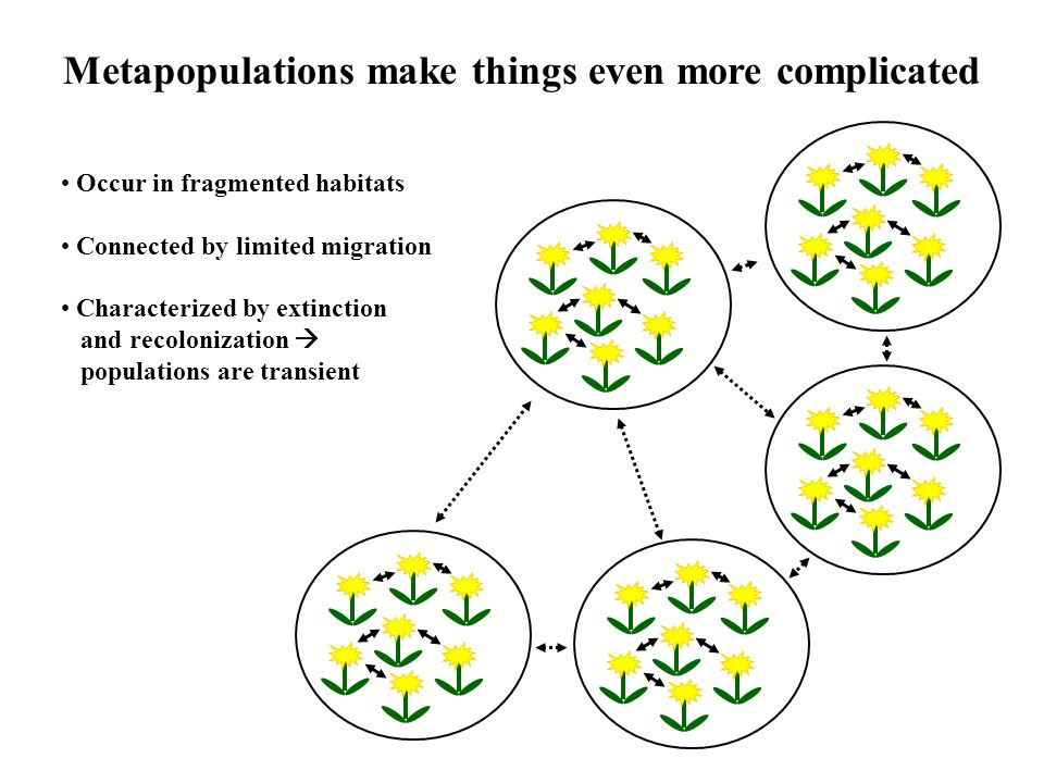 Metapopulations make things even more complicated