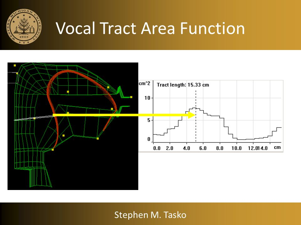 Vocal Tract Area Function