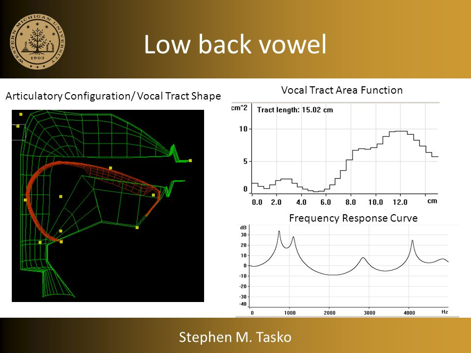Low back vowel Stephen M. Tasko Vocal Tract Area Function