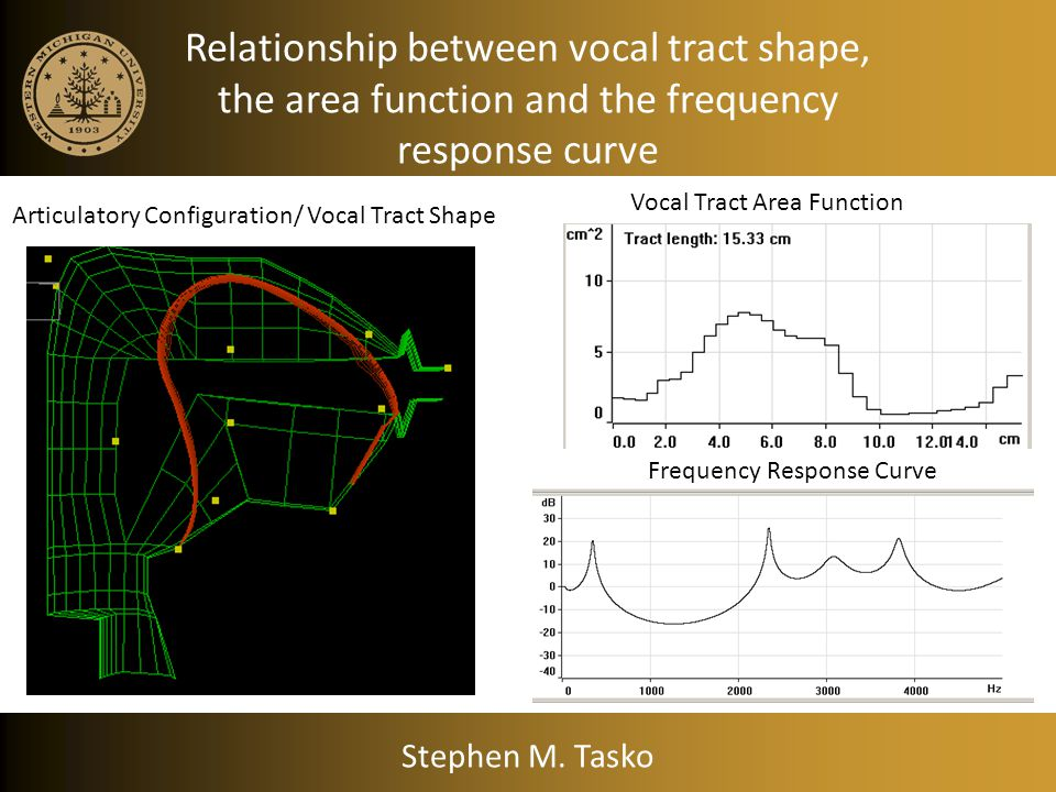 Relationship between vocal tract shape, the area function and the frequency response curve