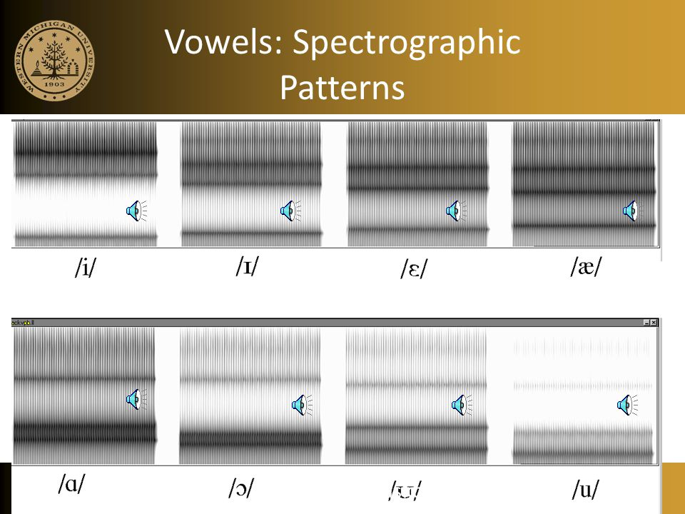 Vowels: Spectrographic Patterns