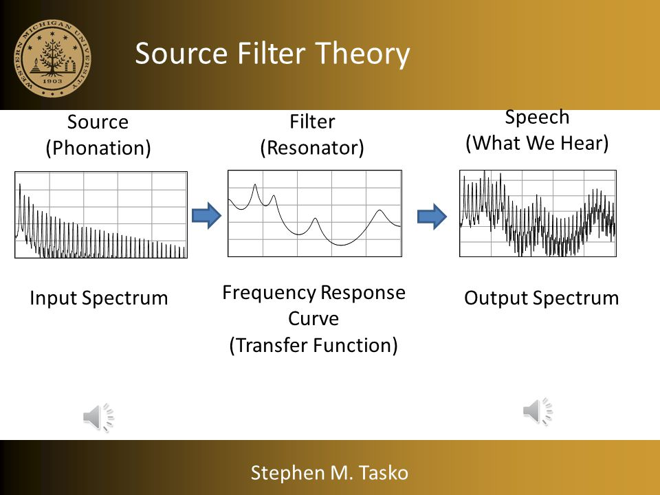 Source Filter Theory Speech (What We Hear) Source (Phonation) Filter