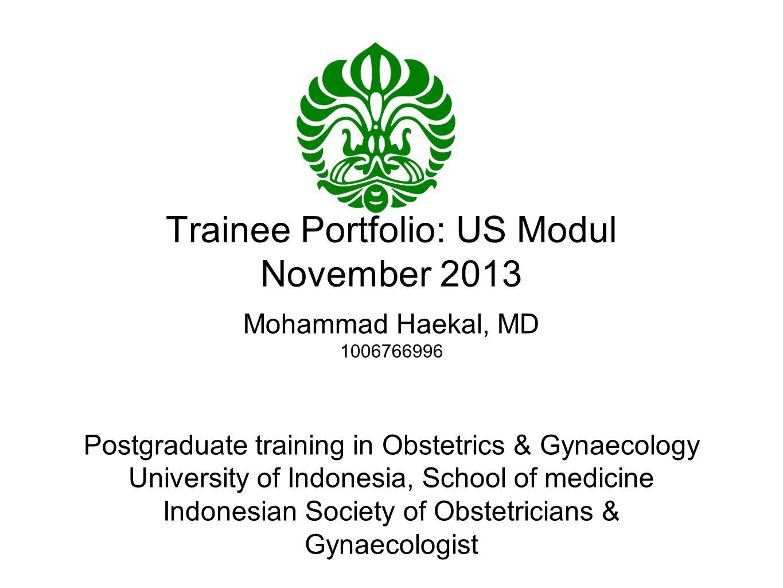 Trainee Portfolio: US Modul November 2013