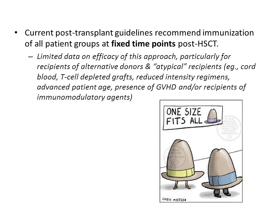 Current post-transplant guidelines recommend immunization of all patient groups at fixed time points post-HSCT.