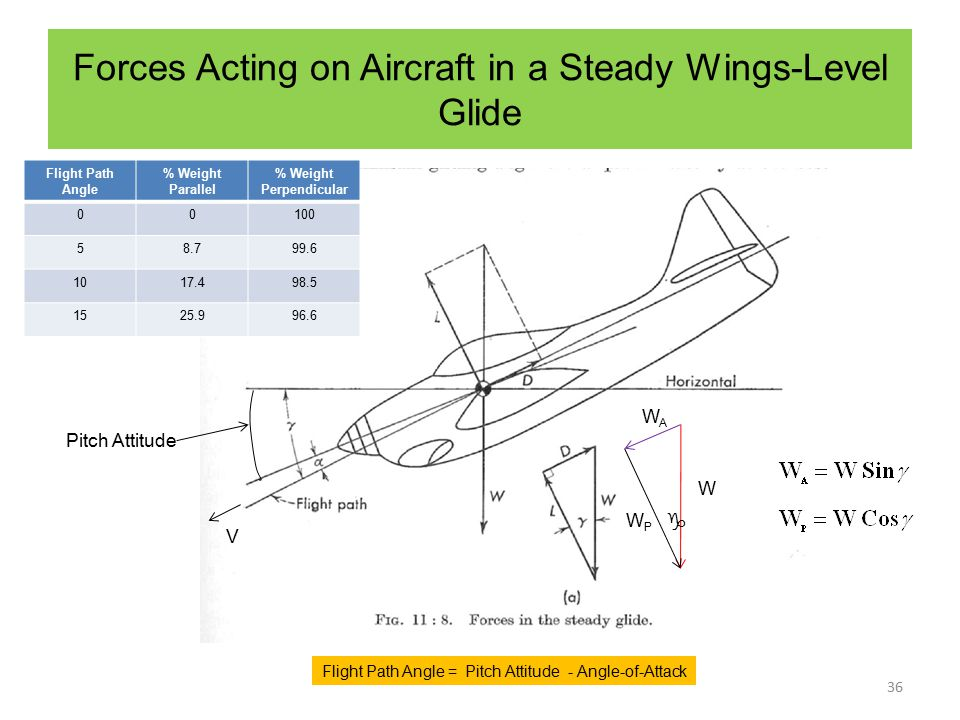 Forces Acting on Aircraft in a Steady Wings-Level Glide