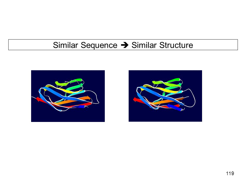 Similar Sequence  Similar Structure