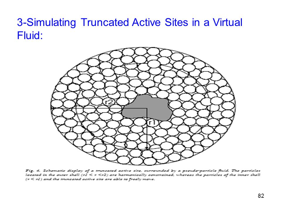 3-Simulating Truncated Active Sites in a Virtual Fluid: