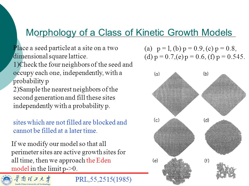 Morphology of a Class of Kinetic Growth Models