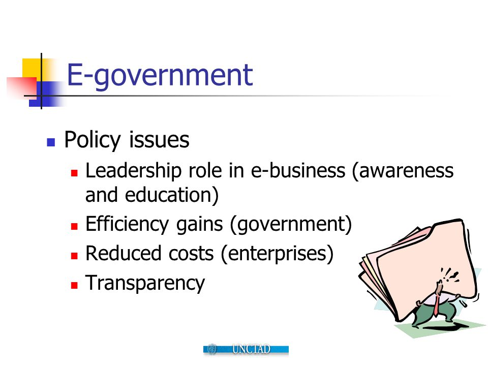 E-government Policy issues