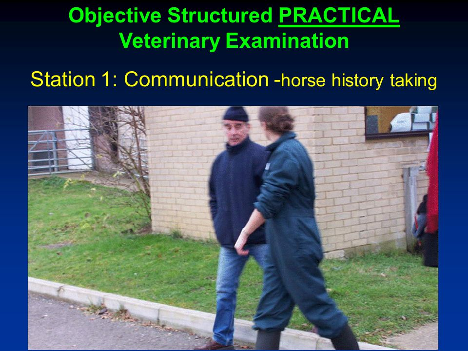 Objective Structured PRACTICAL Veterinary Examination