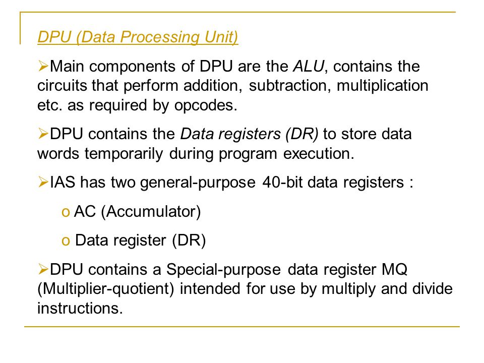 DPU (Data Processing Unit)