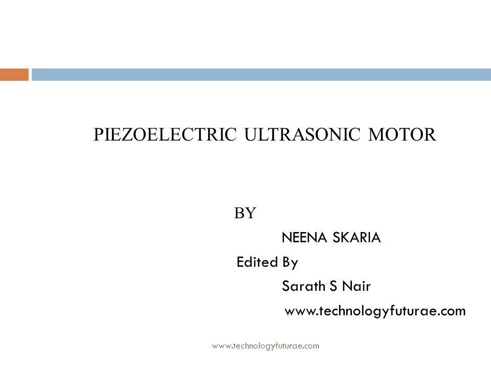 PIEZOELECTRIC ULTRASONIC MOTOR