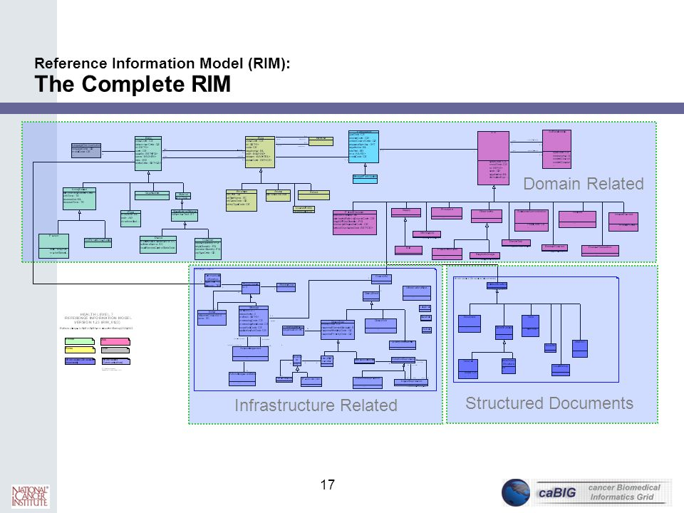 Reference Information Model (RIM): The Complete RIM
