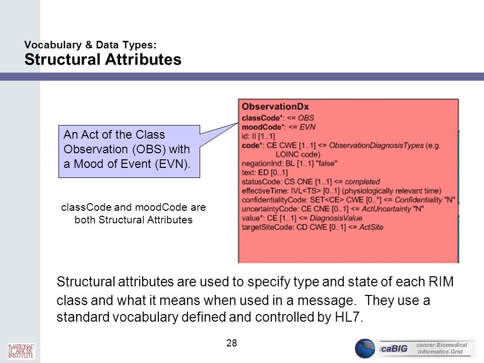 Vocabulary & Data Types: Structural Attributes