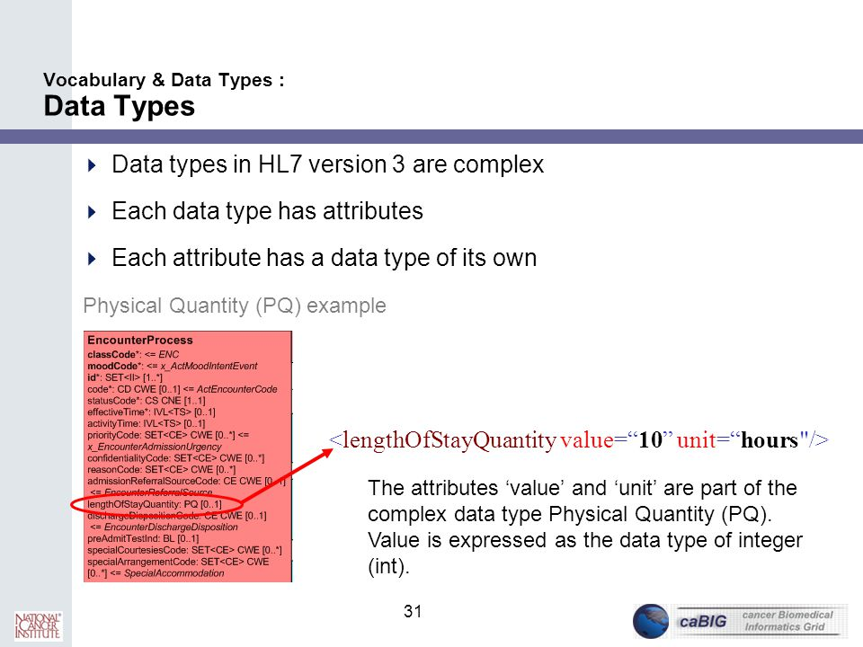 Vocabulary & Data Types : Data Types