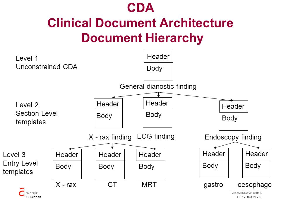 CDA Clinical Document Architecture Document Hierarchy