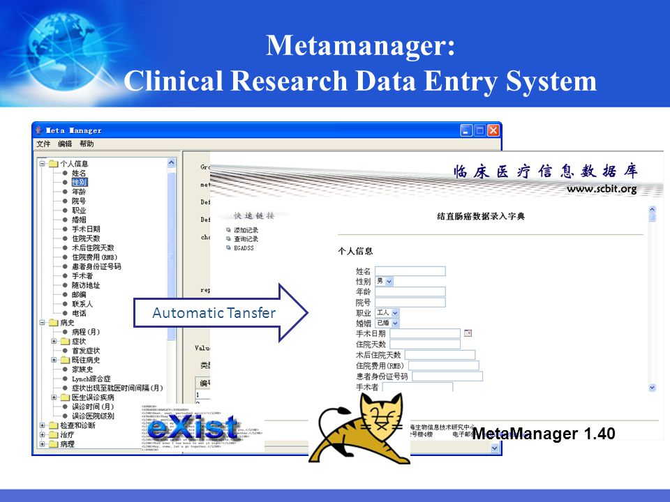 Metamanager: Clinical Research Data Entry System