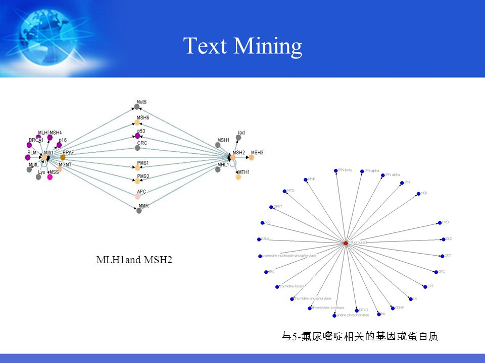 Text Mining MLH1and MSH2 与5-氟尿嘧啶相关的基因或蛋白质