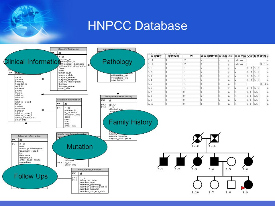 HNPCC Database Clinical Information Pathology Family History Mutation