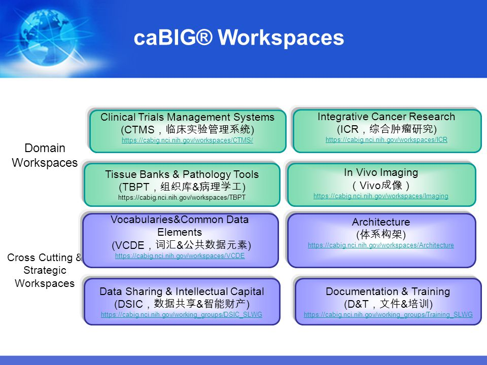 caBIG® Workspaces Domain Workspaces Clinical Trials Management Systems