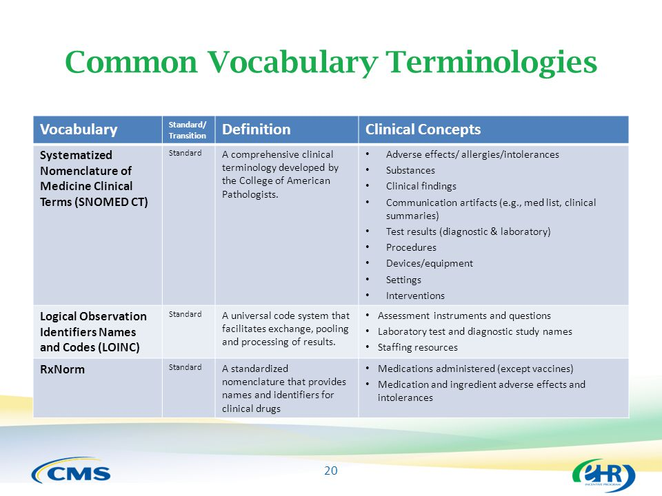Common Vocabulary Terminologies
