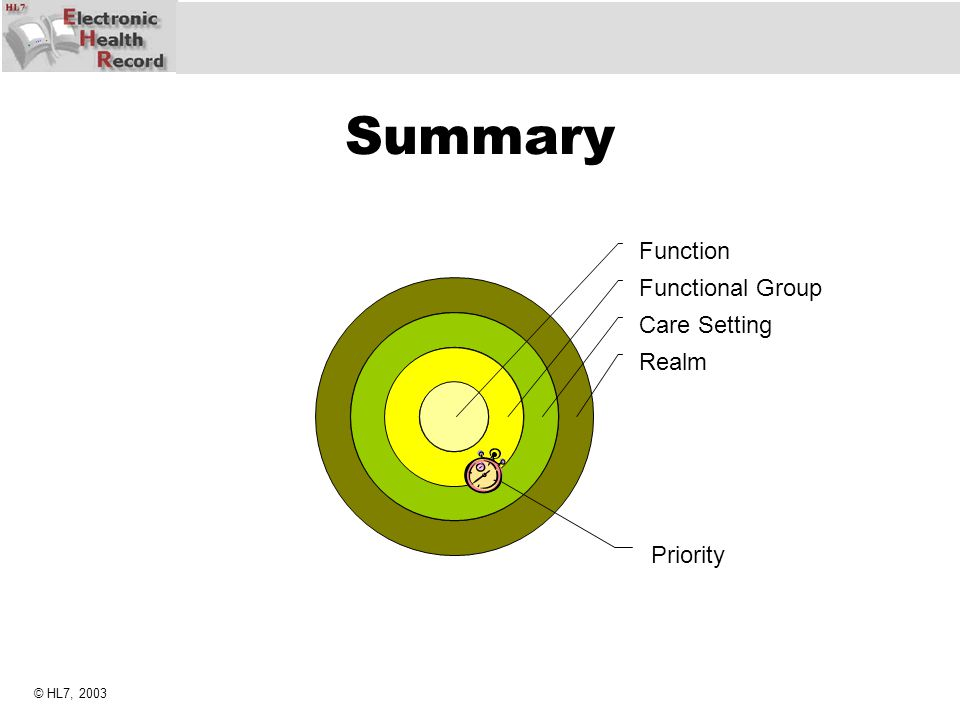 Summary Function Functional Group Care Setting Realm Priority