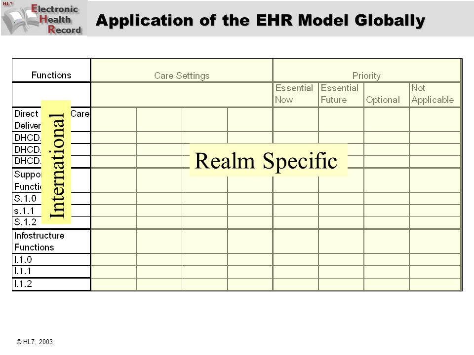 Realm Specific International Application of the EHR Model Globally