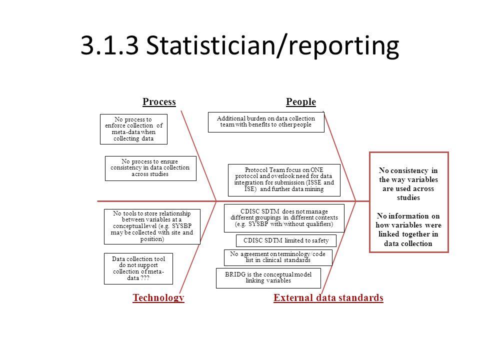 3.1.3 Statistician/reporting
