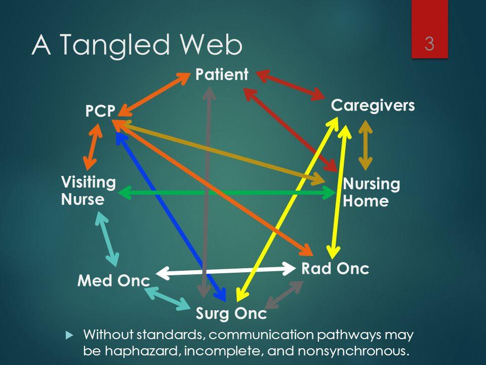 A Tangled Web Patient Caregivers PCP Visiting Nurse Nursing Home