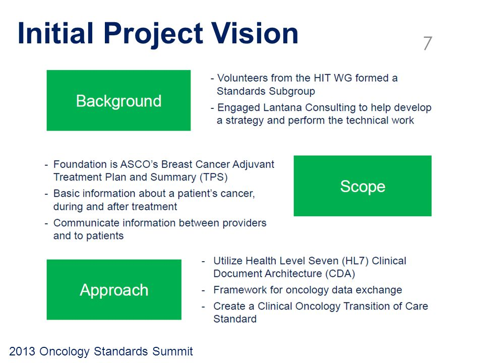 Initial Project Vision