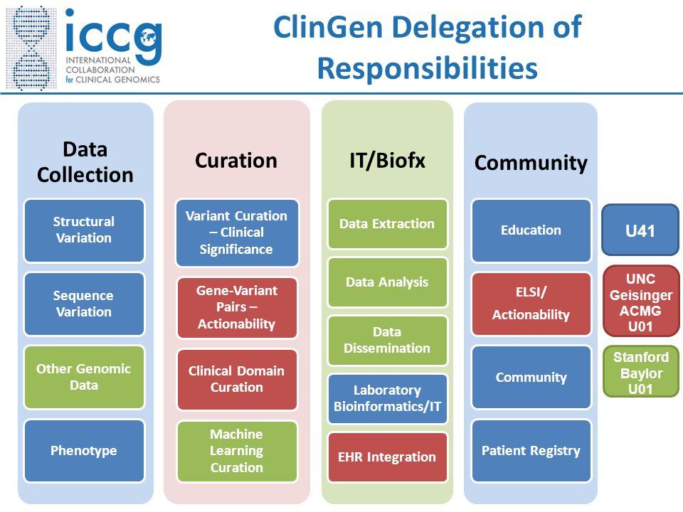 ClinGen Delegation of Responsibilities