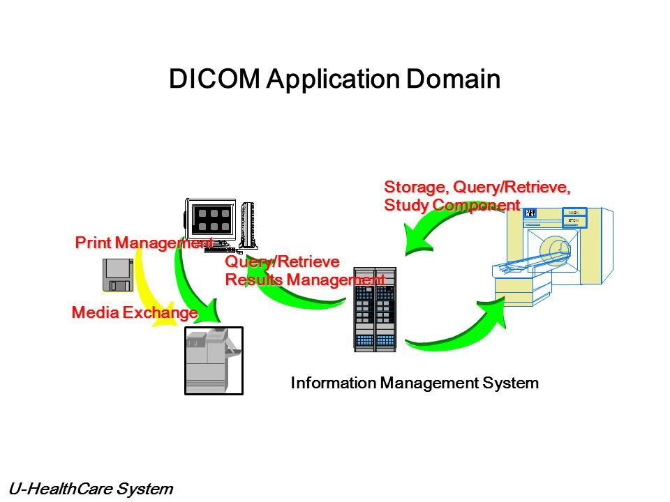 DICOM Application Domain
