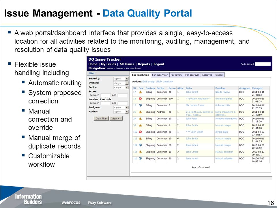 Issue Management - Data Quality Portal