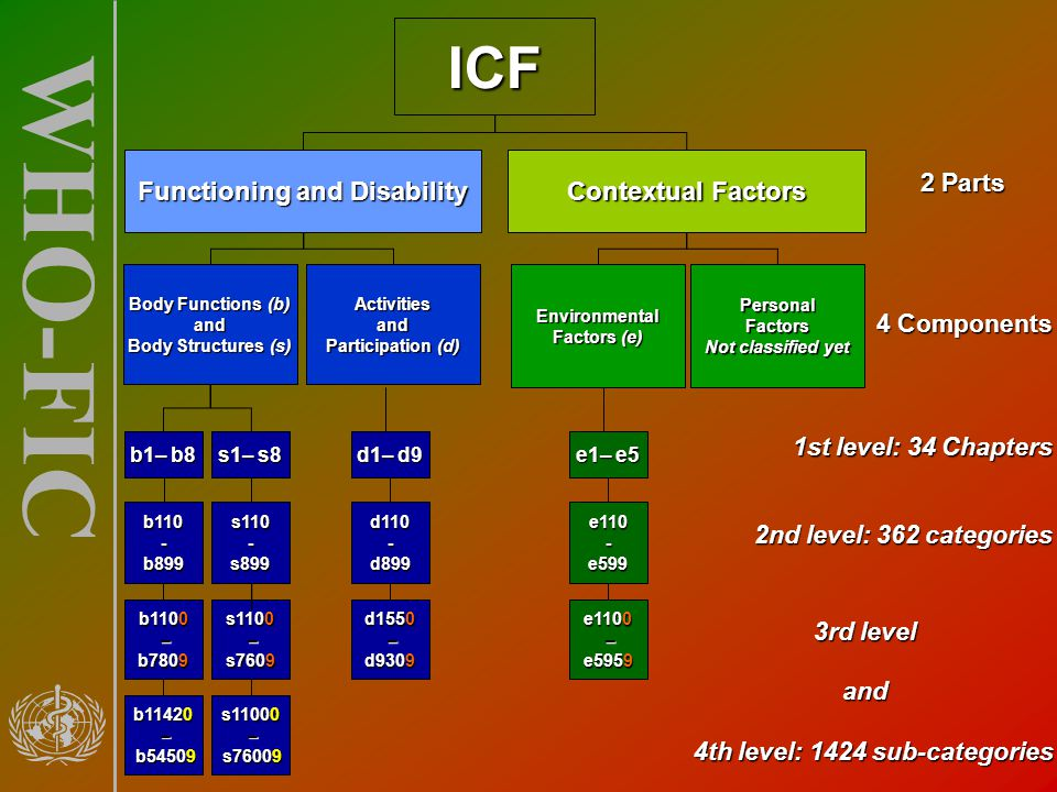 Functioning and Disability