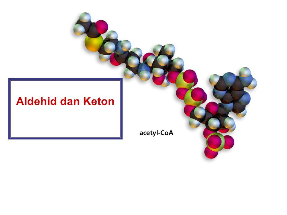 Aldehid dan Keton