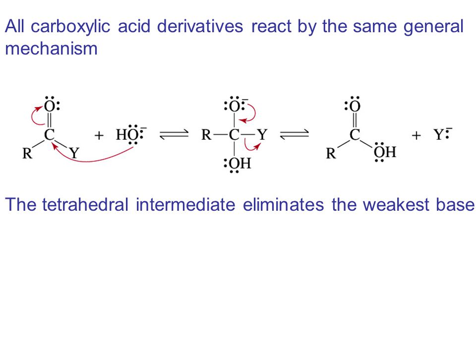 All carboxylic acid derivatives react by the same general