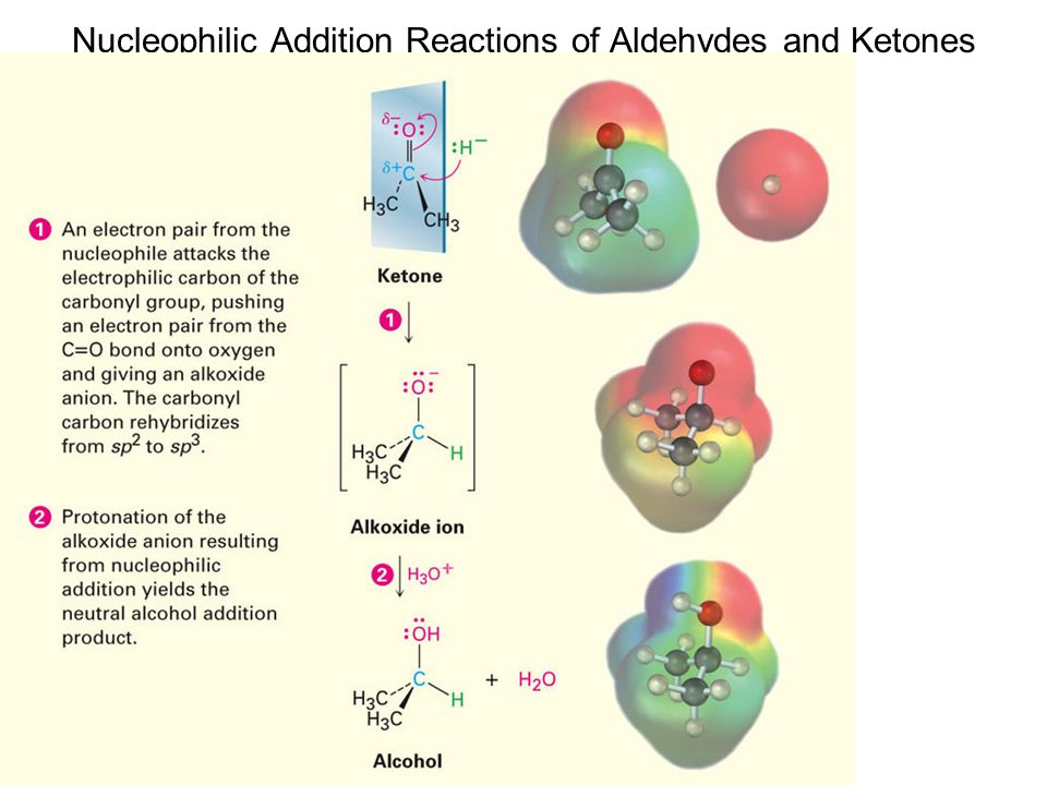 Nucleophilic Addition Reactions of Aldehydes and Ketones