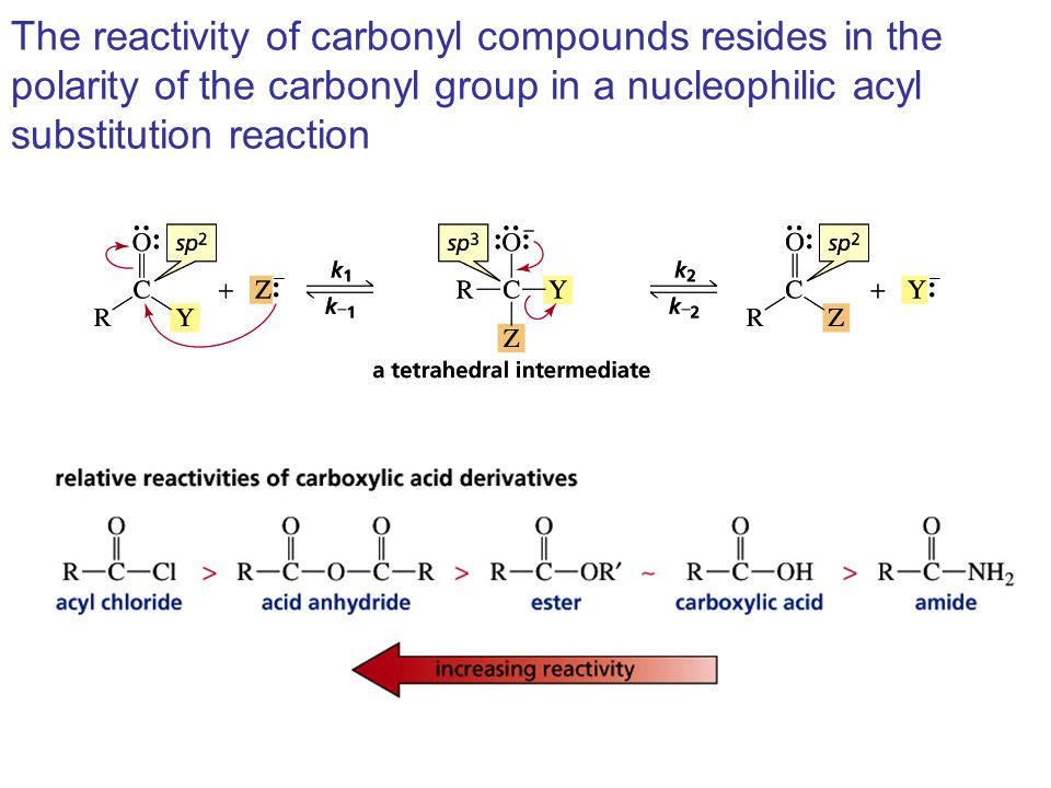 The reactivity of carbonyl compounds resides in the