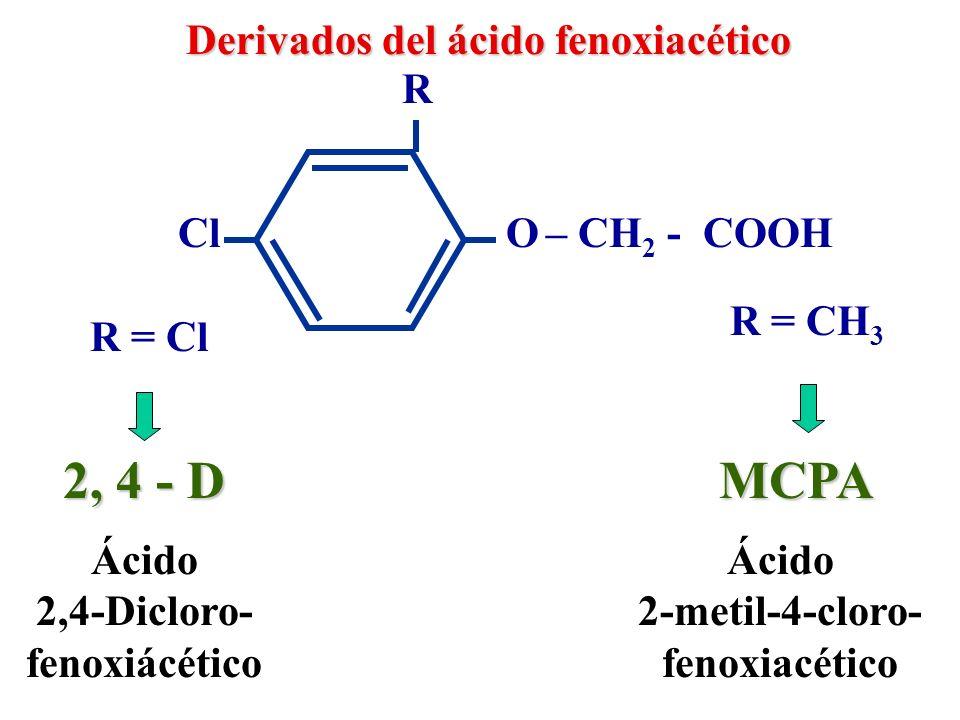 2-metil-4-cloro-fenoxiacético