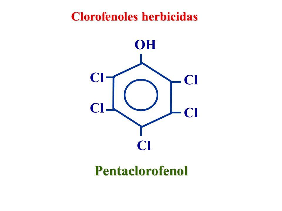 Clorofenoles herbicidas