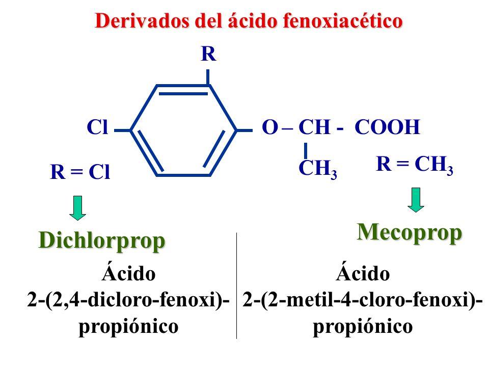 2-(2-metil-4-cloro-fenoxi)-