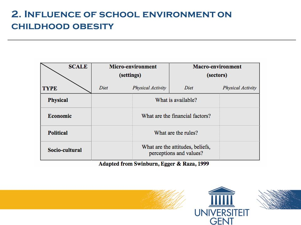 2. Influence of school environment on childhood obesity