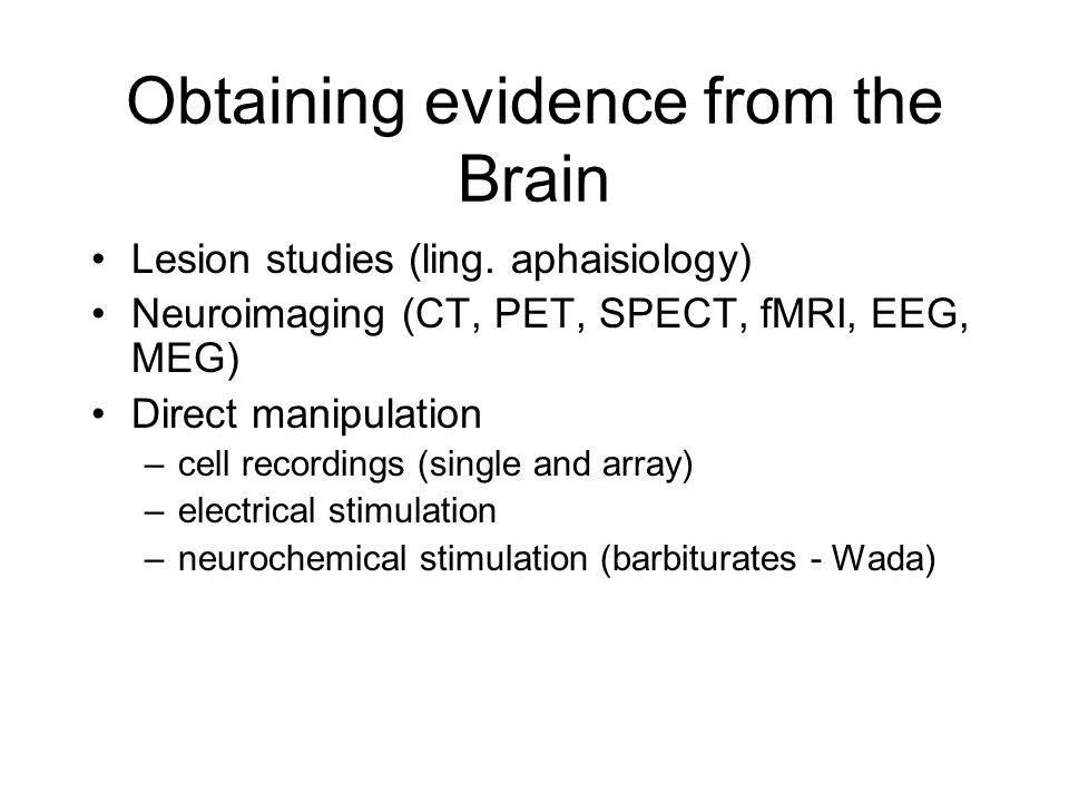 Obtaining evidence from the Brain