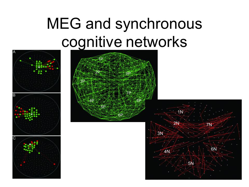 MEG and synchronous cognitive networks
