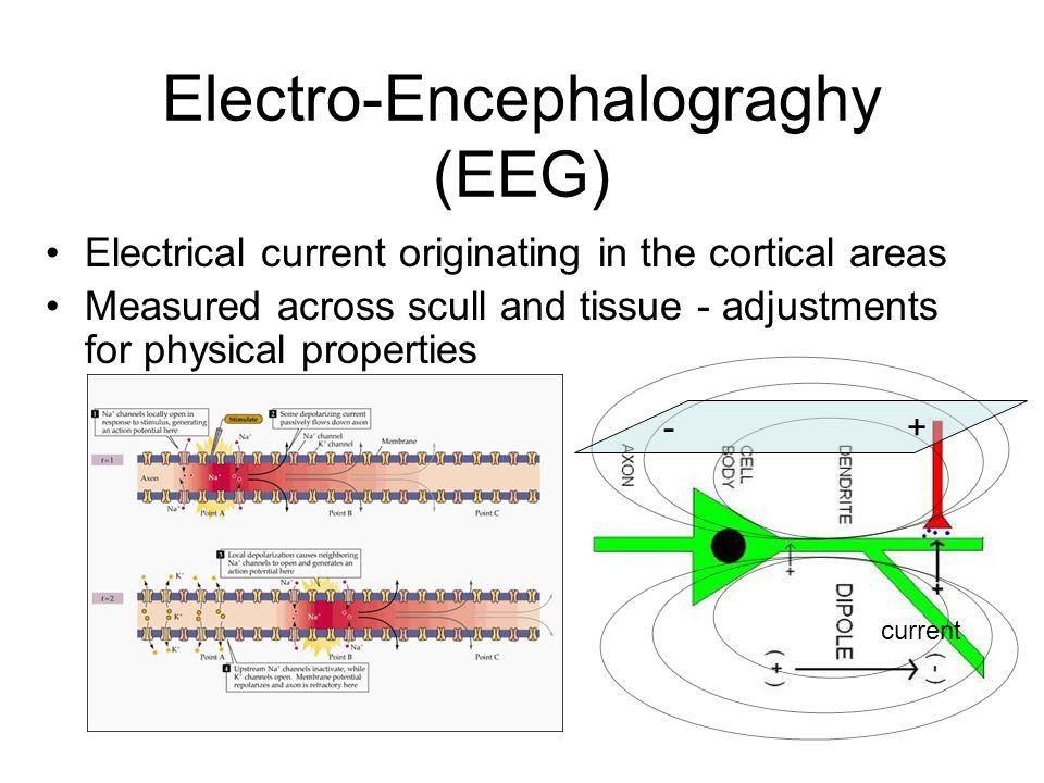 Electro-Encephalograghy (EEG)